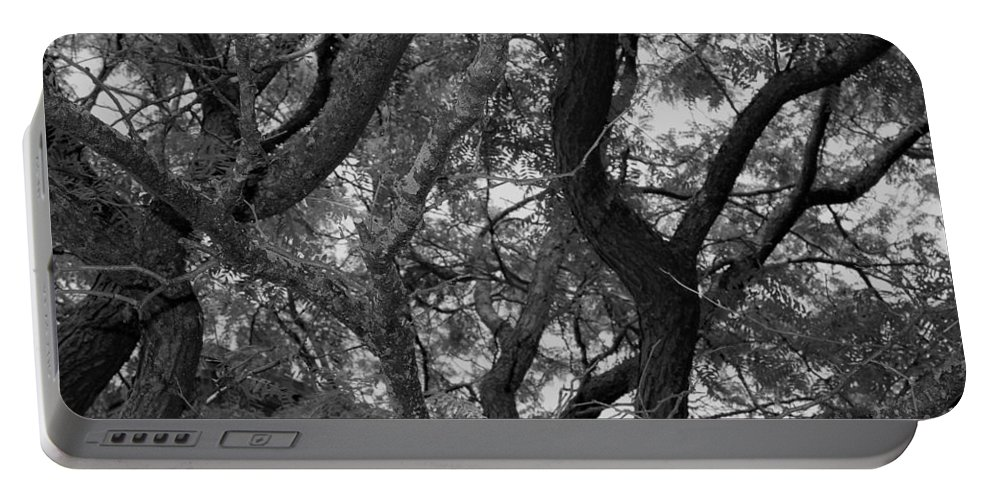 Portable Battery Charger featuring the photograph Tree by John Bichler