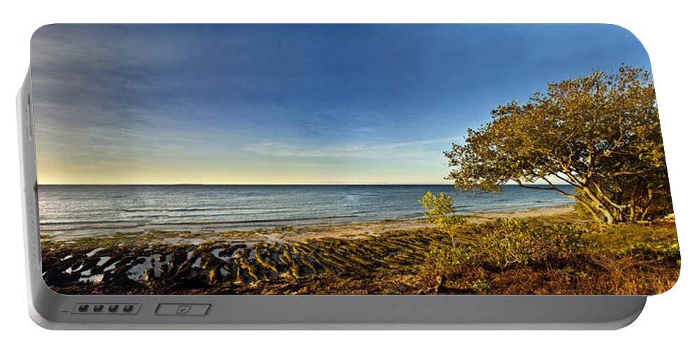 Panoramic Portable Battery Charger featuring the photograph Trees by George Cabig