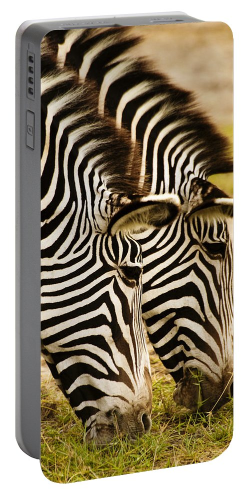 Africa Portable Battery Charger featuring the photograph Twins In Stripes by Michele Burgess