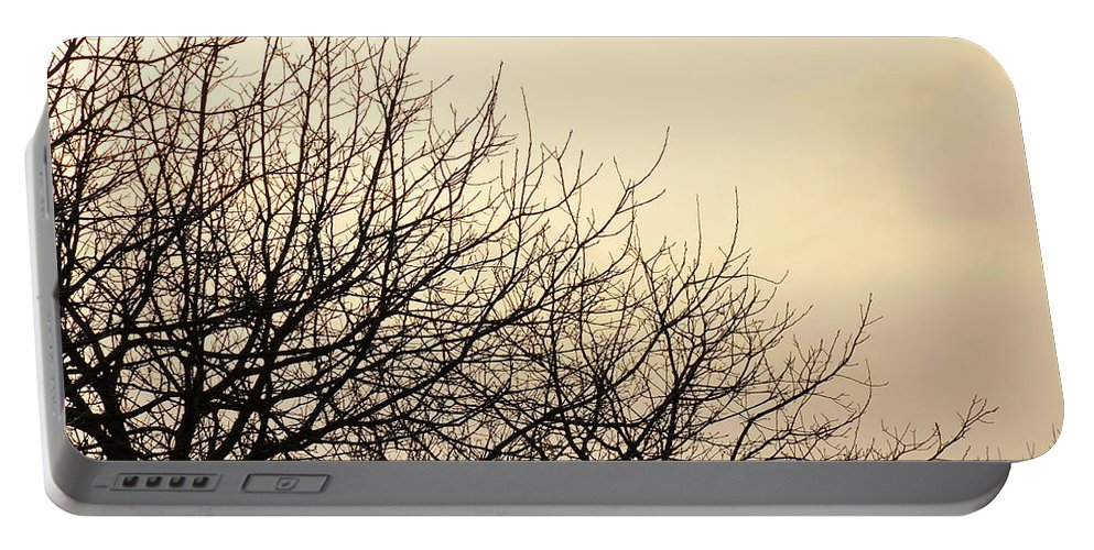 Trees Portable Battery Charger featuring the photograph Untitled by Ilaria Andreucci