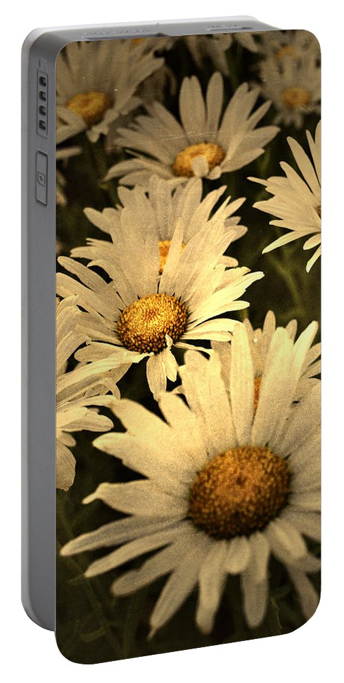 Flowers Portable Battery Charger featuring the photograph Untitled by Tara Turner