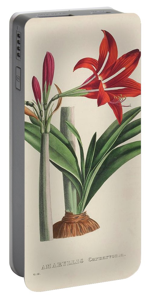Yellow Portable Battery Charger featuring the painting Vegetable by MotionAge Designs
