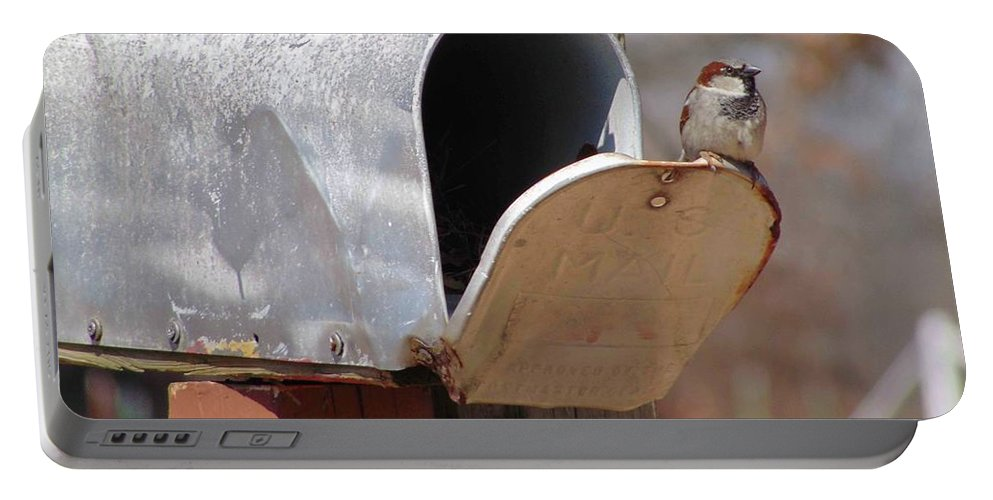 Bird Portable Battery Charger featuring the photograph Waiting by Karen Capehart