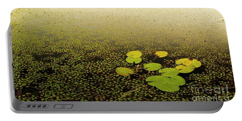 Lily Portable Battery Charger featuring the photograph Water Lily Pads by Tim Hester