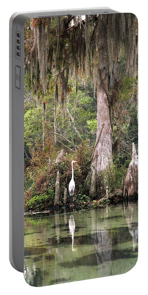 Weeki Wachee Portable Battery Charger featuring the photograph Weeki Wachee River by Steven Sparks