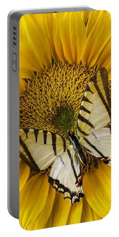 Yellow Portable Battery Charger featuring the photograph White Butterfly On Sunflower by Garry Gay