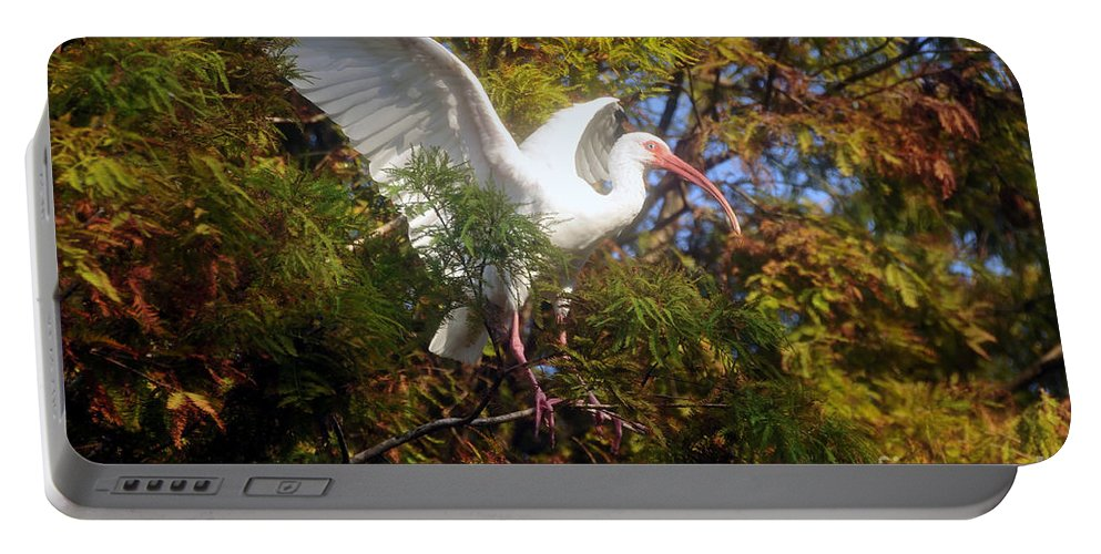 White Ibis Portable Battery Charger featuring the photograph White Ibis by David Lee Thompson