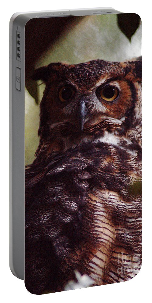 Clay Portable Battery Charger featuring the photograph WHO by Clayton Bruster
