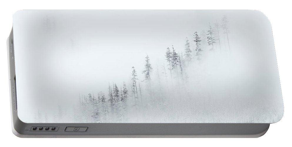 Winter Portable Battery Charger featuring the photograph Winter Veil by Mike Dawson