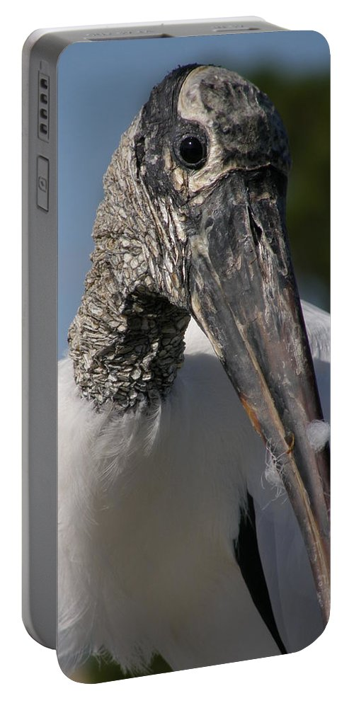 Bird Portable Battery Charger featuring the photograph Wood Stork by Kimberly Mohlenhoff