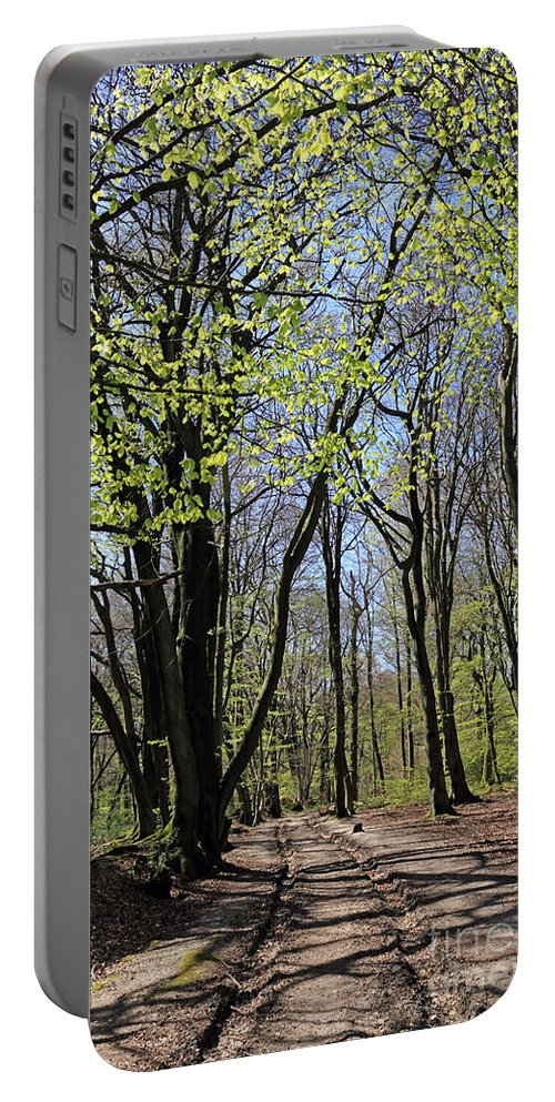 Woodland Walk England Beech Trees Spring Portable Battery Charger featuring the photograph Woodland Walk England by Julia Gavin