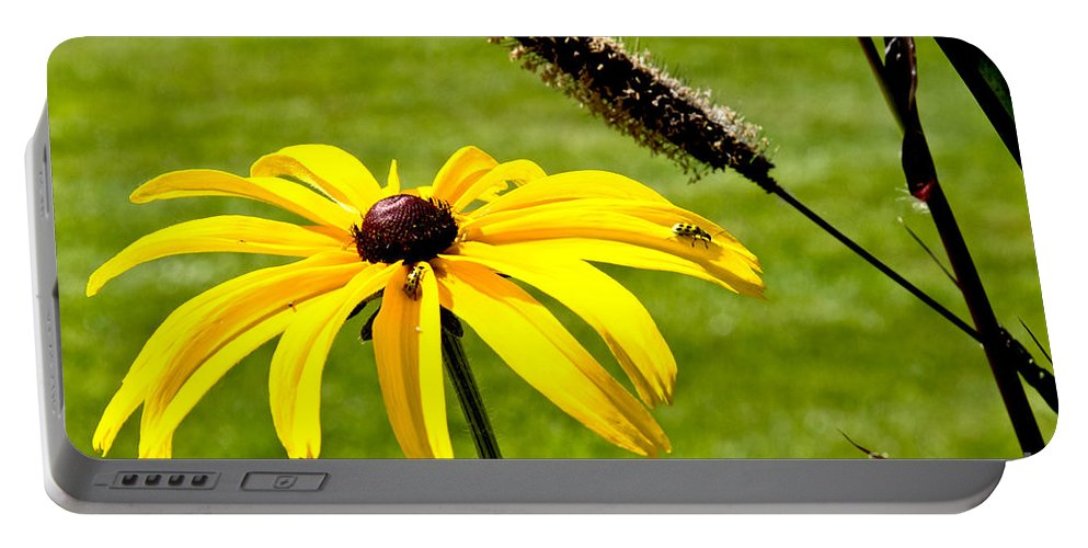 Daisy Portable Battery Charger featuring the photograph 1 Yellow Daisy 2 Yellow Bugs by Andee Design