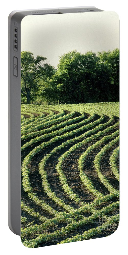 Soy Portable Battery Charger featuring the photograph Young Soybean Plants by Inga Spence