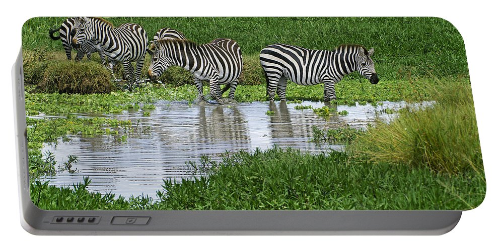 Africa Portable Battery Charger featuring the photograph Zebras In The Swamp by Michele Burgess