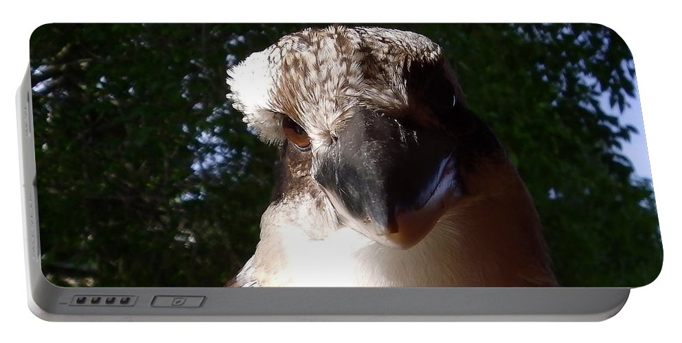 Australia Portable Battery Charger featuring the photograph Australia - Kookaburra Up Close by Jeffrey Shaw