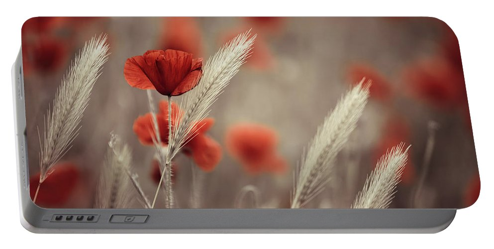 Poppy Portable Battery Charger featuring the photograph Summer Poppy Meadow by Nailia Schwarz