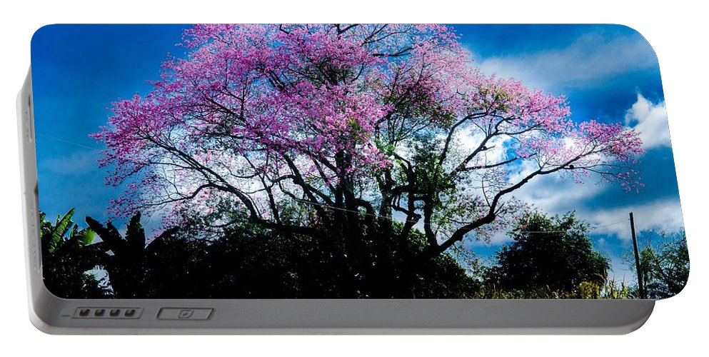 Cherry_blossom Portable Battery Charger featuring the photograph Nature by FL collection