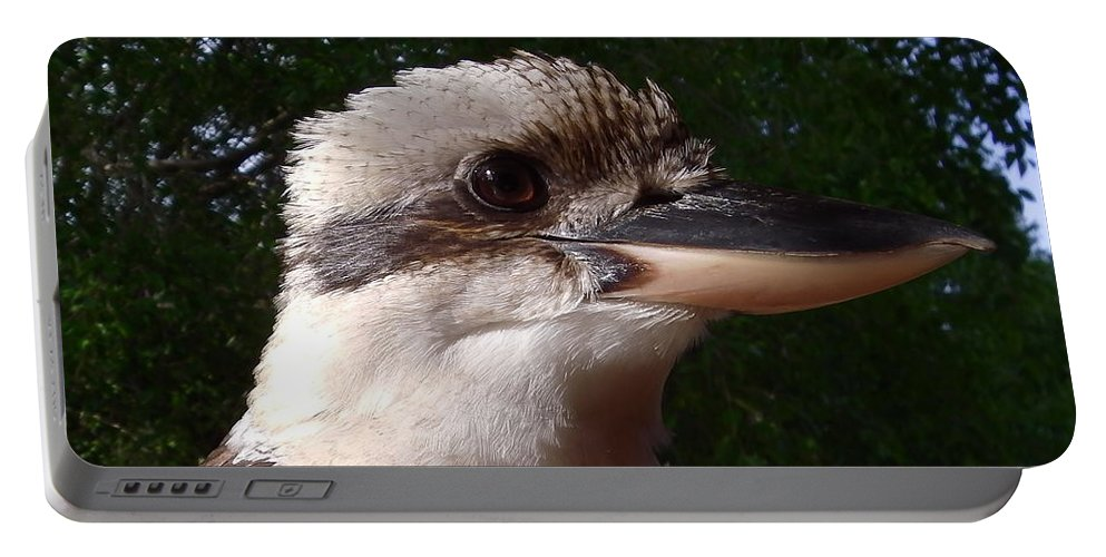 Australia Portable Battery Charger featuring the photograph Australia - Kookaburra Poses by Jeffrey Shaw