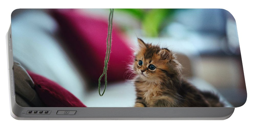 Cat Portable Battery Charger featuring the digital art Cat by Dorothy Binder