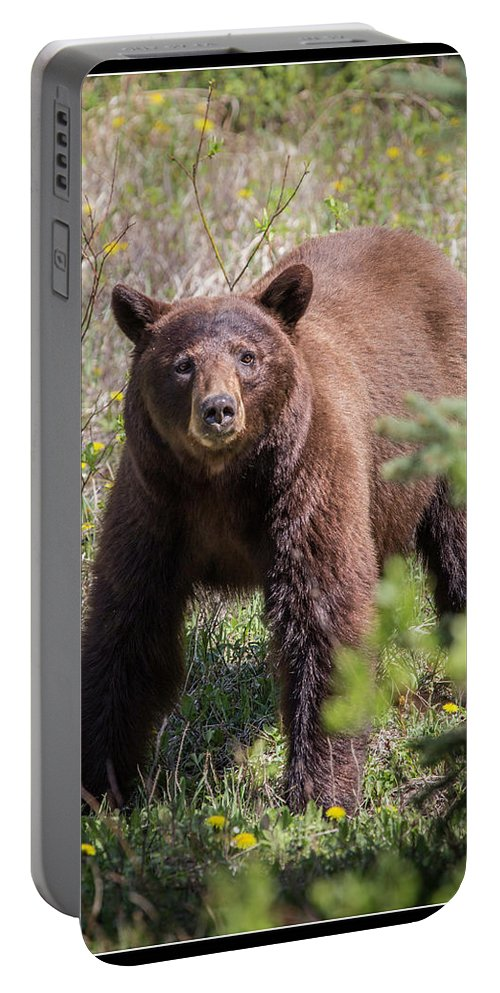 Portable Battery Charger featuring the photograph 13 by J and j Imagery