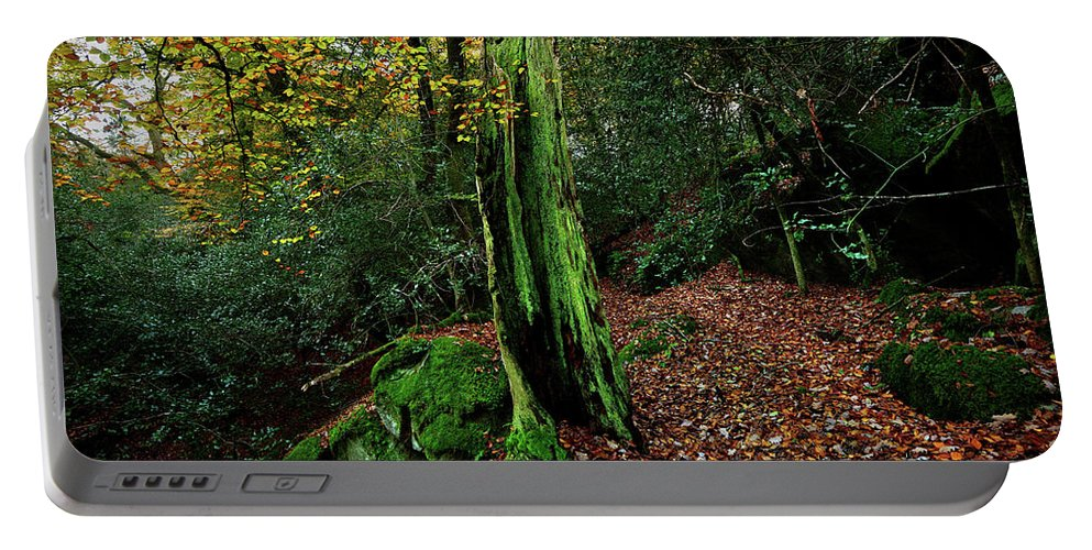 Nature Portable Battery Charger featuring the photograph Fontainebleau Forest by Olivier Blaise