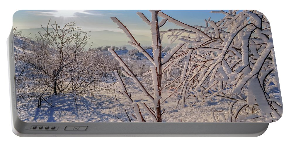 Landscape Portable Battery Charger featuring the photograph Sunny Transcarpathia by Lyudmila Prokopenko