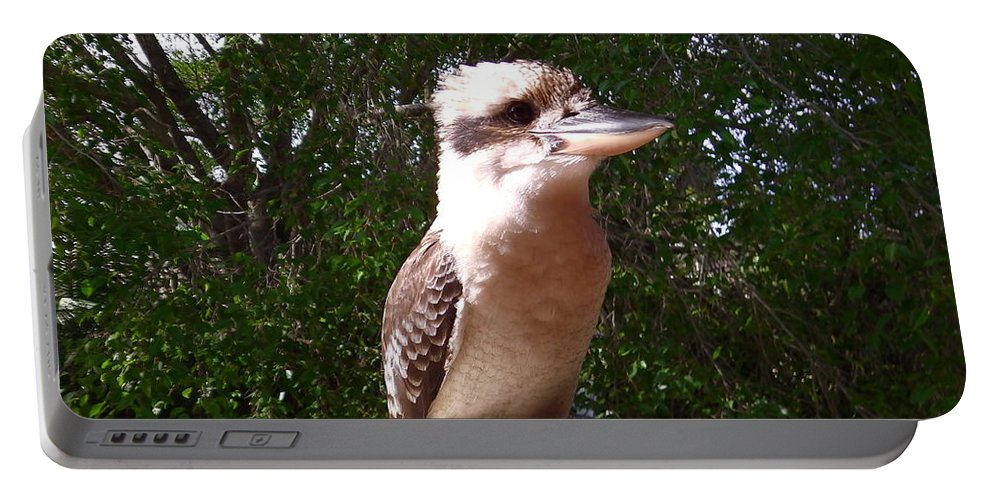 Australia Portable Battery Charger featuring the photograph Australia - Kookaburra Full Body Look by Jeffrey Shaw