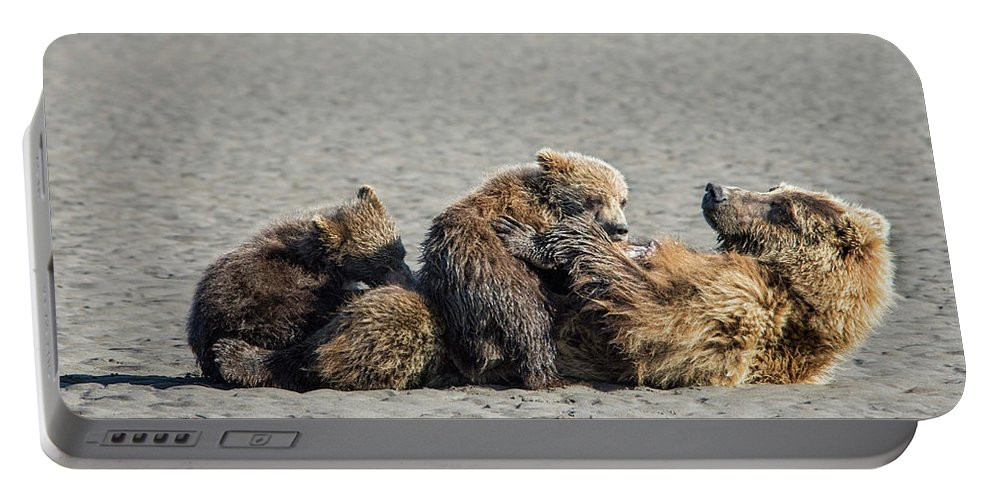 Grizzly Bear Portable Battery Charger featuring the photograph Break Time by Claudia Kuhn