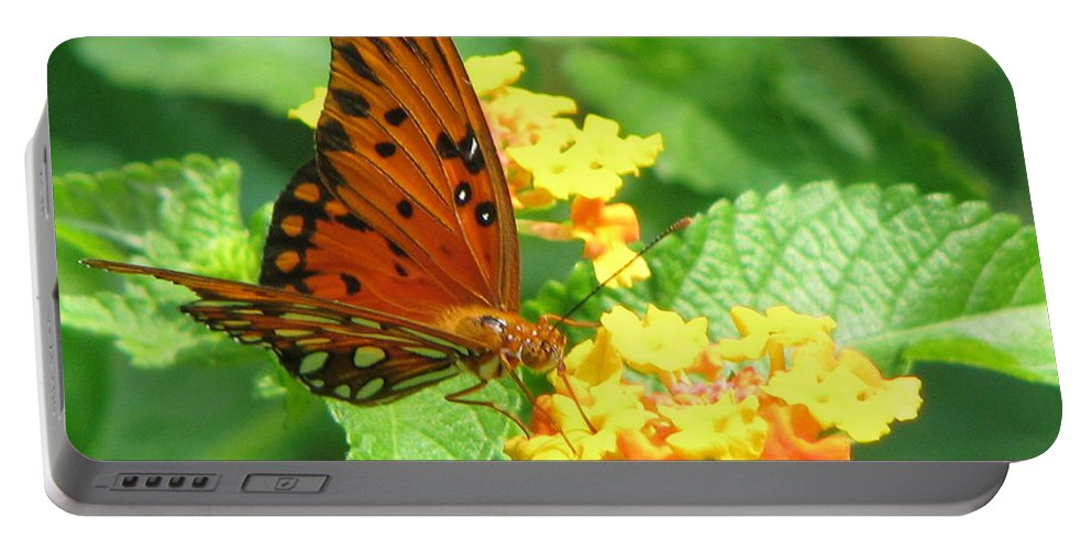 Butterfly Portable Battery Charger featuring the photograph Butterfly by Amanda Barcon
