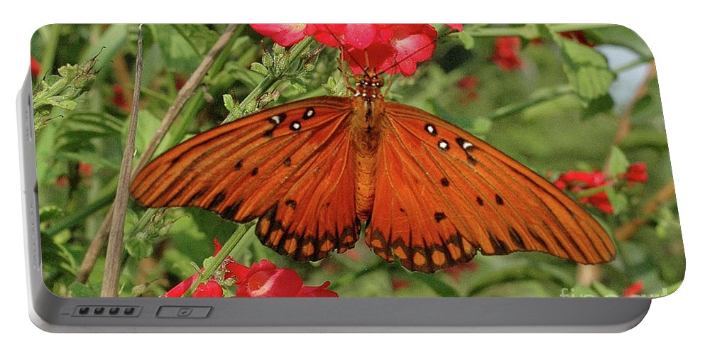 Butterfly Portable Battery Charger featuring the photograph Butterfly by Bernd Billmayer