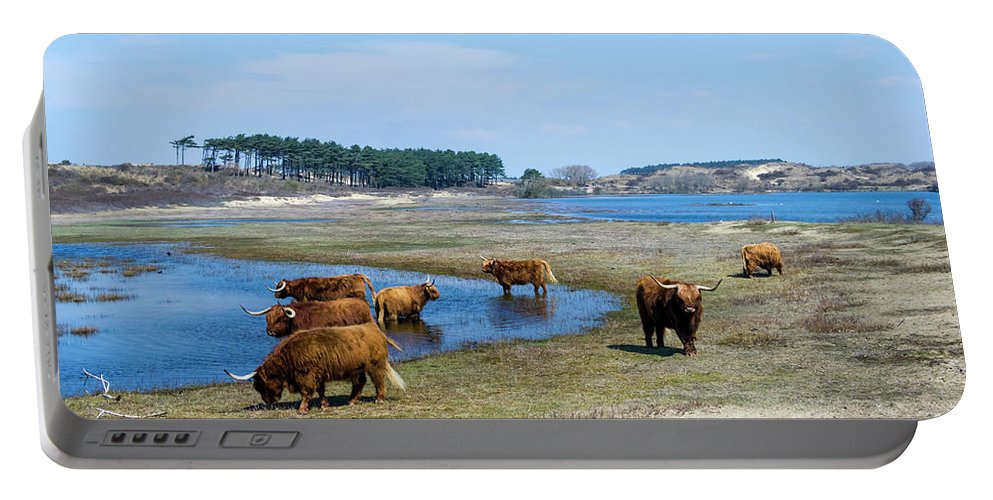 Landscape Portable Battery Charger featuring the photograph Cattle Scottish Highlanders, Zuid Kennemerland, Netherlands by Tetyana Ustenko