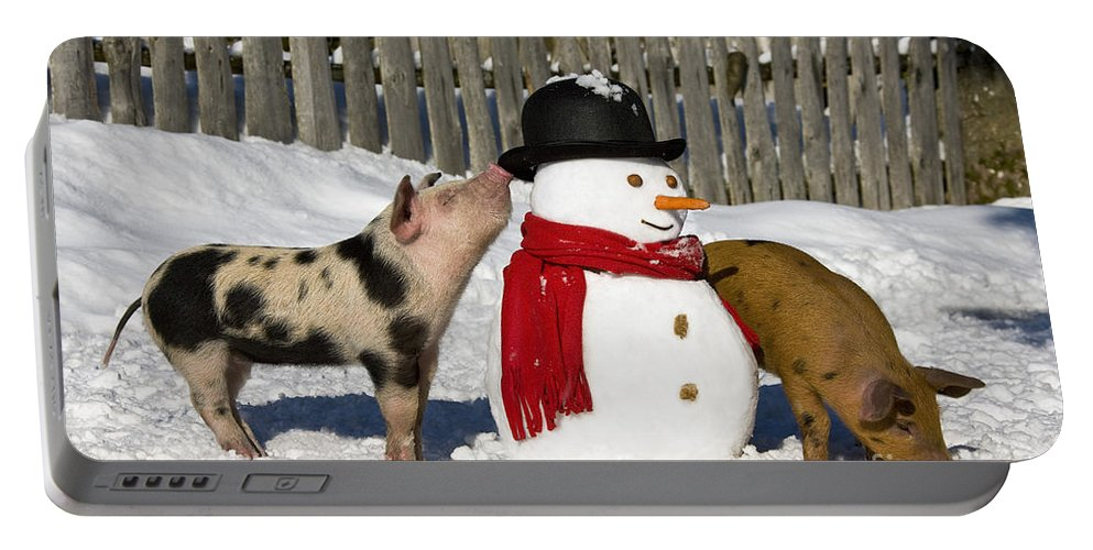 Piglet Portable Battery Charger featuring the photograph Curious Piglets And Snowman by Jean-Louis Klein & Marie-Luce Hubert