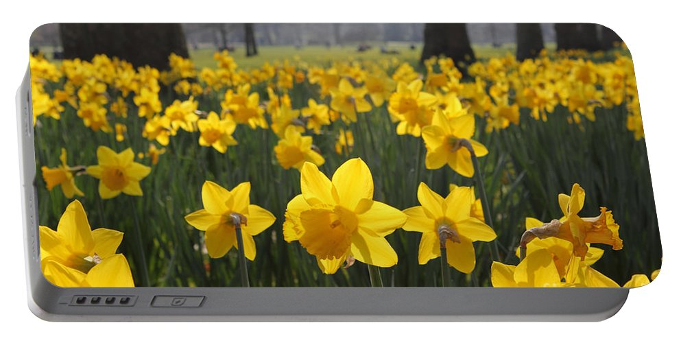 Daffodils In St James Park London Portable Battery Charger featuring the photograph Daffodils In St James Park London by Julia Gavin