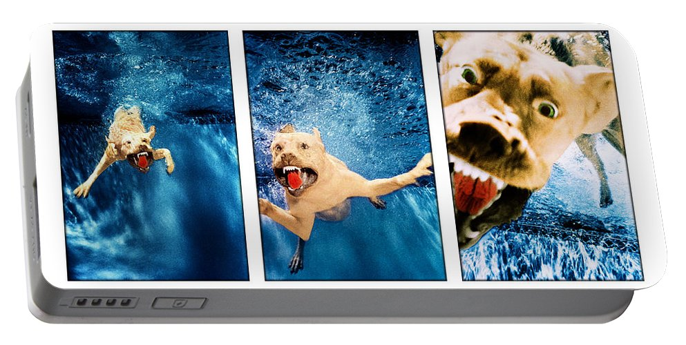 Dog Portable Battery Charger featuring the photograph Dog Underwater Series by Jill Reger