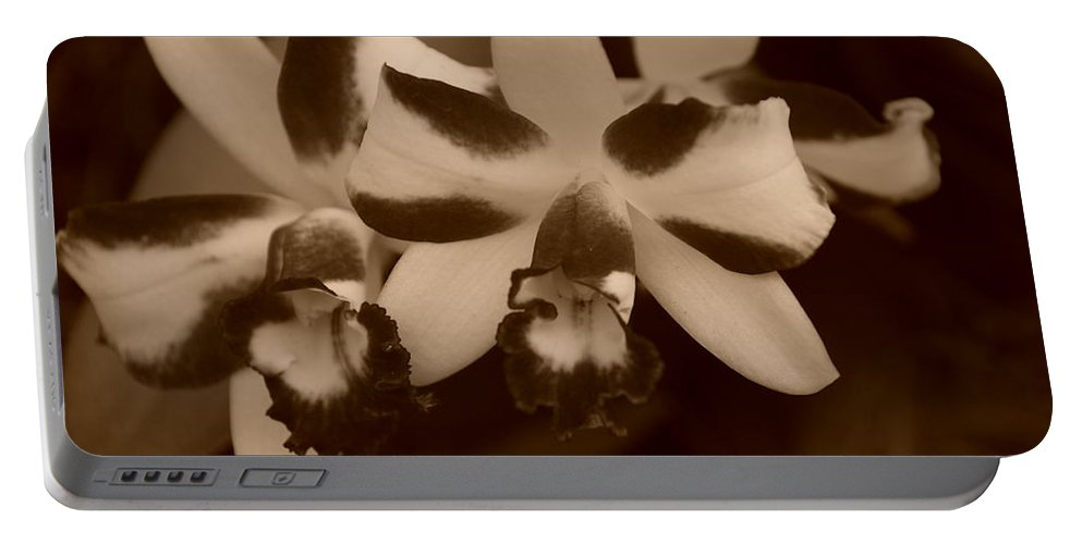 Macro Portable Battery Charger featuring the photograph Double Orchid by Rob Hans