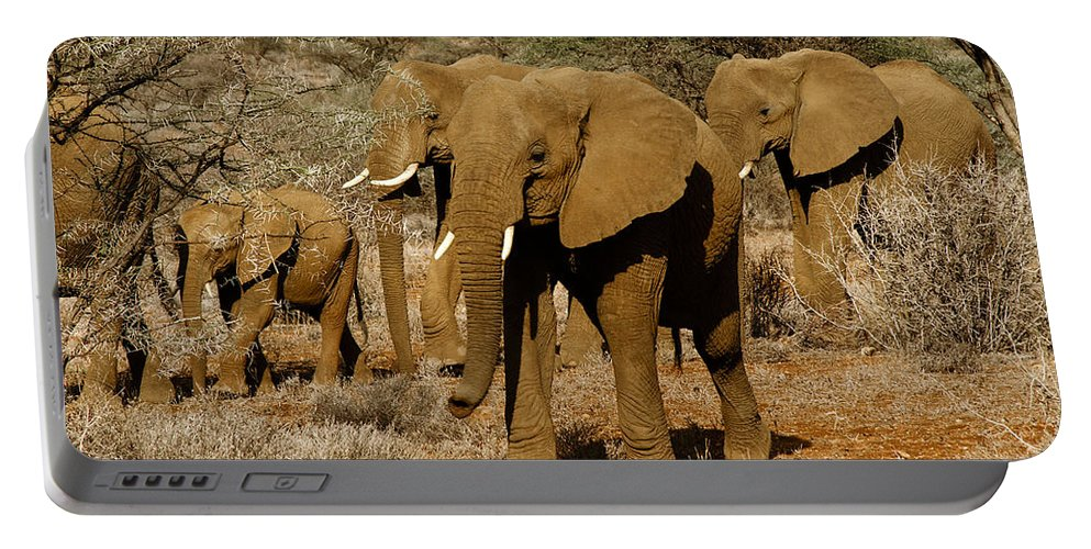 Africa Portable Battery Charger featuring the photograph Elephant Parade by Michele Burgess