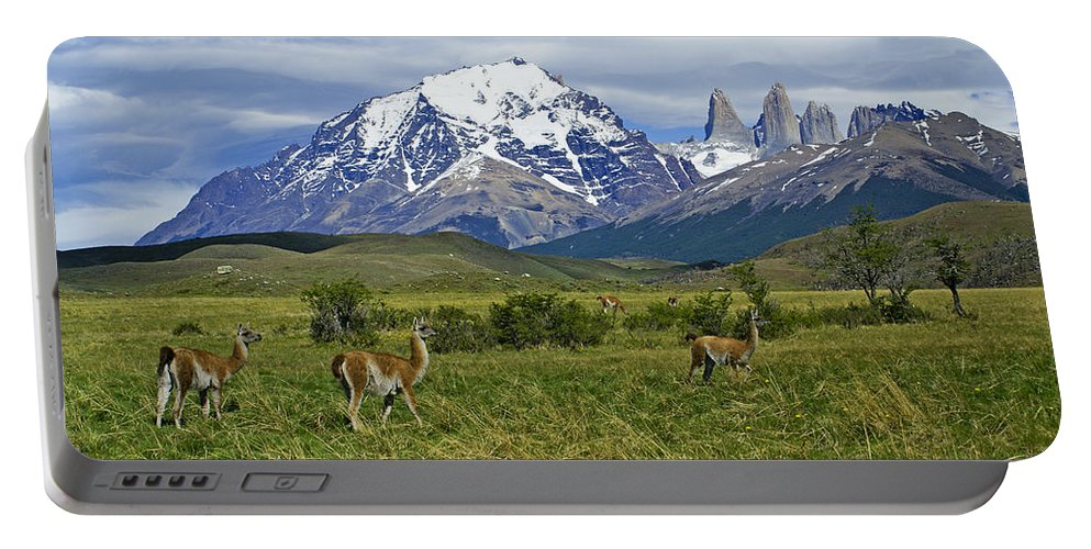 Patagonia Portable Battery Charger featuring the photograph Guanacos In Torres Del Paine by Michele Burgess