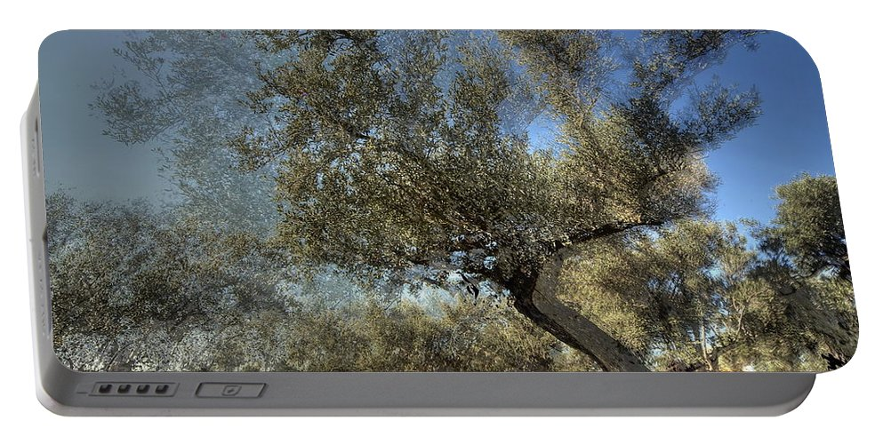 Olive Portable Battery Charger featuring the photograph Olive Trees by Vladi Alon