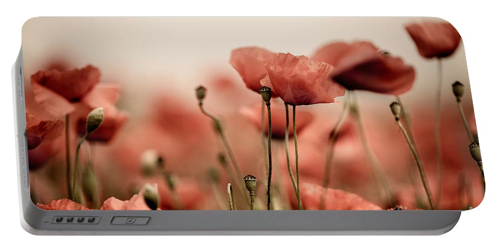 Poppy Portable Battery Charger featuring the photograph Poppy Dream by Nailia Schwarz