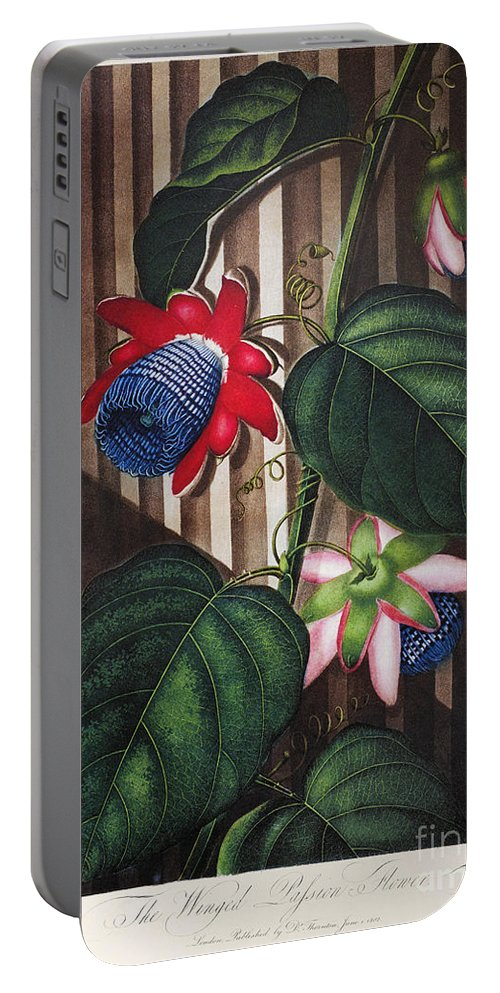 1802 Portable Battery Charger featuring the photograph Thornton: Passion-flower by Granger