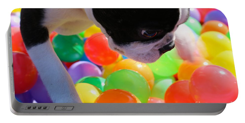 Animal Portable Battery Charger featuring the photograph Vibrant Life by Susan Herber