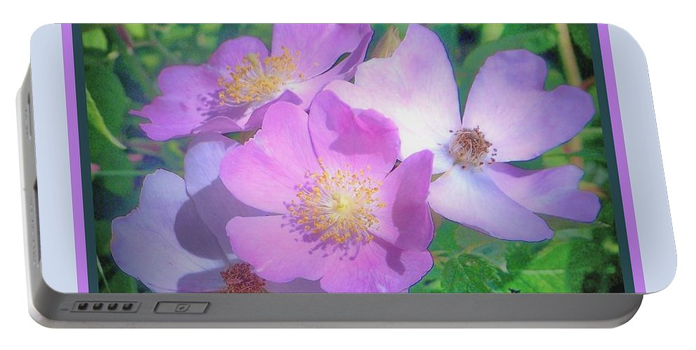 Portable Battery Charger featuring the photograph Wild Roses by Shirley Moravec