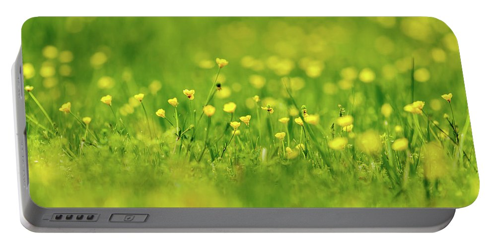 Biology Portable Battery Charger featuring the photograph Wildflowers by Bryan Pollard