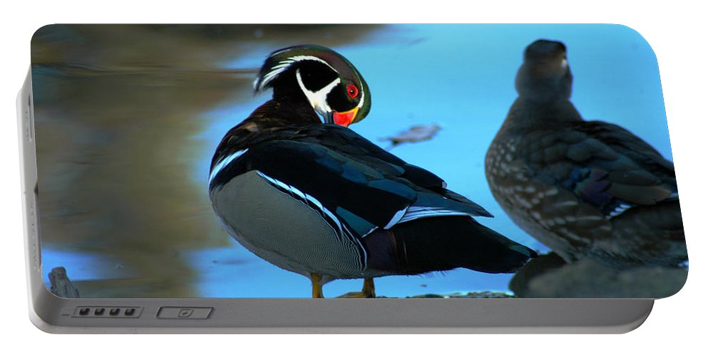 Clay Portable Battery Charger featuring the photograph Wood Duck by Clayton Bruster