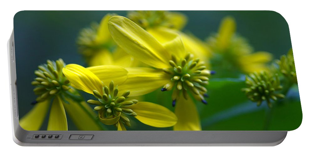 Background Portable Battery Charger featuring the photograph Yellow Wingstem by Jack R Perry