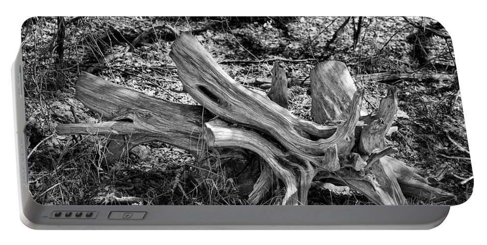 Texas; Hill Country; Dead Tree; Deadfall Tree; Stump; B/w Photo; Black And White Photograph; Black And White Photography; Black And White Pictures; Bw Photo Portable Battery Charger featuring the photograph 201702250-005k Cedar Stumps 2x3 by Alan Tonnesen