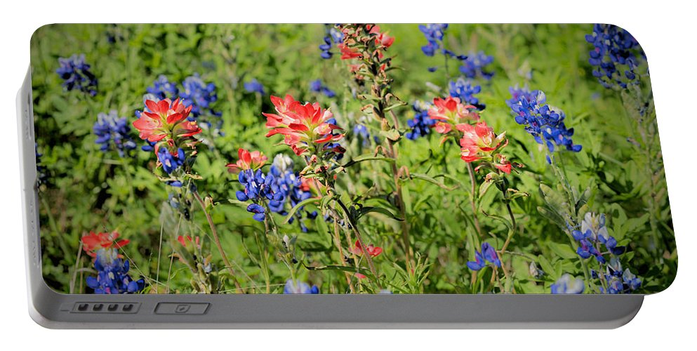 Early Morning; Spring; Texas; Hill Country; 2017; 2010s; March; Texas Bluebonnets; Wild Flowers; Indian Paint Brush; Blooms; Blossoms; Flowers; Central Texas Hill Country; Castilleja Indivisa; Lupinus Texensis; Aspect Ratio 2:3; Format 2:3; Color Images; Color Photo; Color Photograph; Color Pictures; Horizontal Format; Orientation Landscape Portable Battery Charger featuring the photograph 201703300-068 Indian Paintbrush Blossom 2x3 by Alan Tonnesen