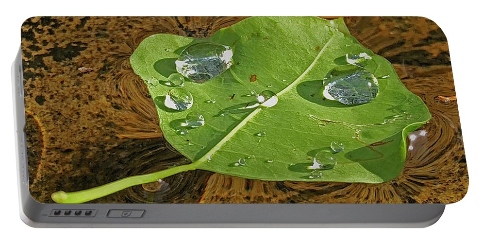 Leaf Portable Battery Charger featuring the photograph 2018 08 31 Sign H2o Leaf Img_5999 by Mark Olshefski