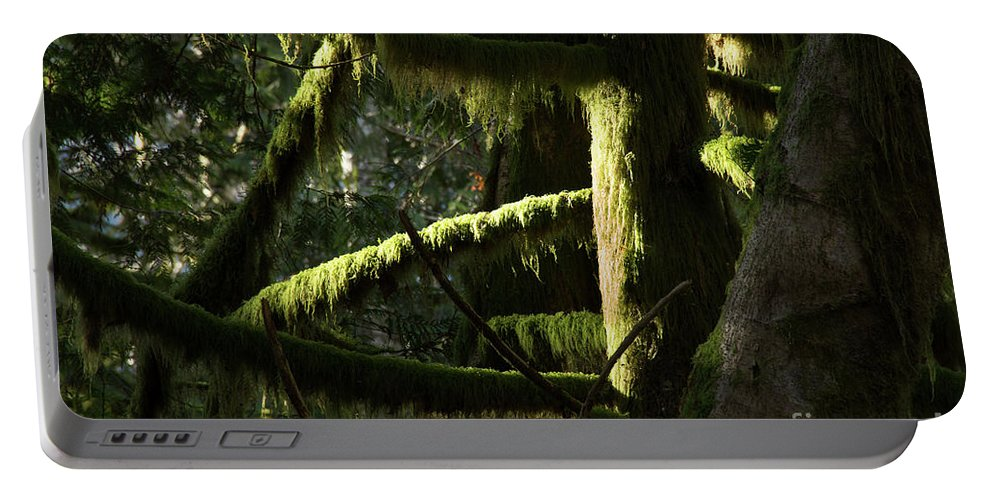 Moss Portable Battery Charger featuring the photograph 2018_2_12 Moss-4247 by Roger Patterson