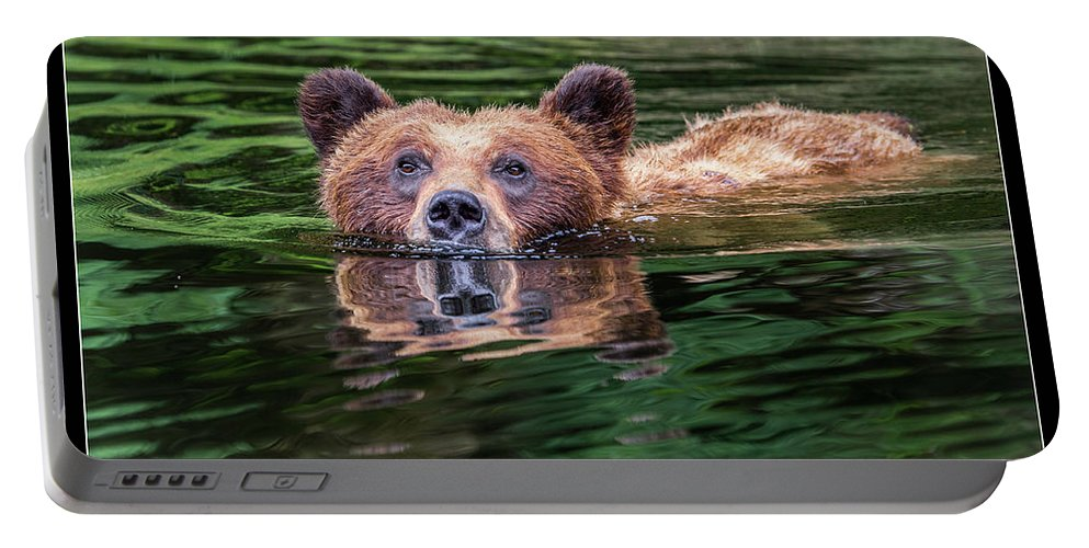 Grizzly Portable Battery Charger featuring the photograph 26 by J and j Imagery